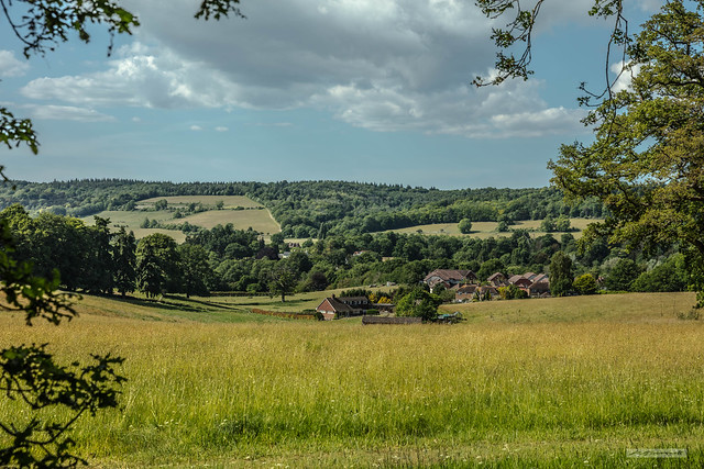 From Shere Heath, a view northward to part of Shere Village and the North Downs.