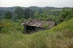 Nelle mie colline