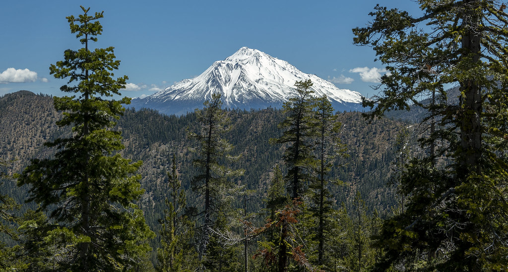 Mt. Shasta from the Caldwell Lake Trail