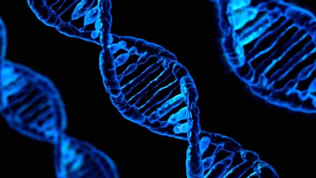 la-génétique-peut-favoriser-la-propagation-du-cancer