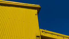 Vibrant corrugated yellow building against a pure blue sky on Granville Island in Vancouver, Canada