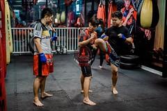 Ý Kiến Của Võ Sĩ Khi Võ Tổng Hợp MMA Được Công Nhận Tại Việt Nam