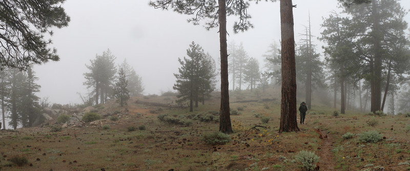 The rain came and went but the misty clouds kept us wet as we hiked over Pacifico Mountain