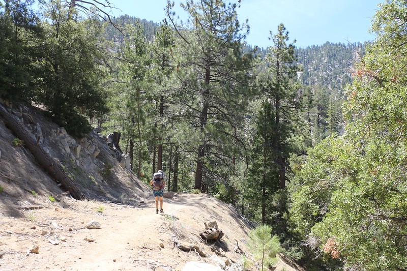 This piece of the PCT was originally a paved road - possibly an earlier version of the Angeles Crest Highway