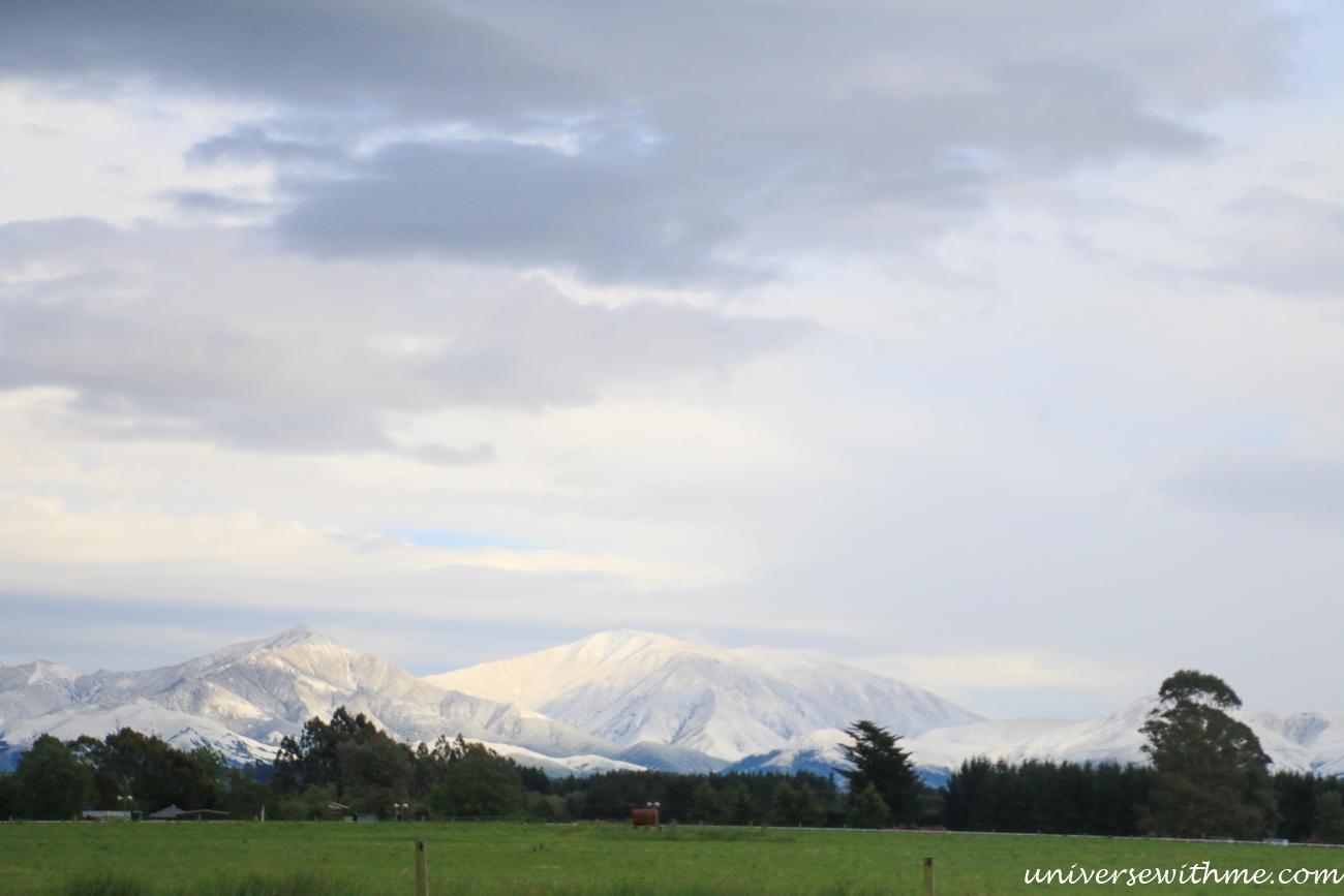 New Zealand Trip_194
