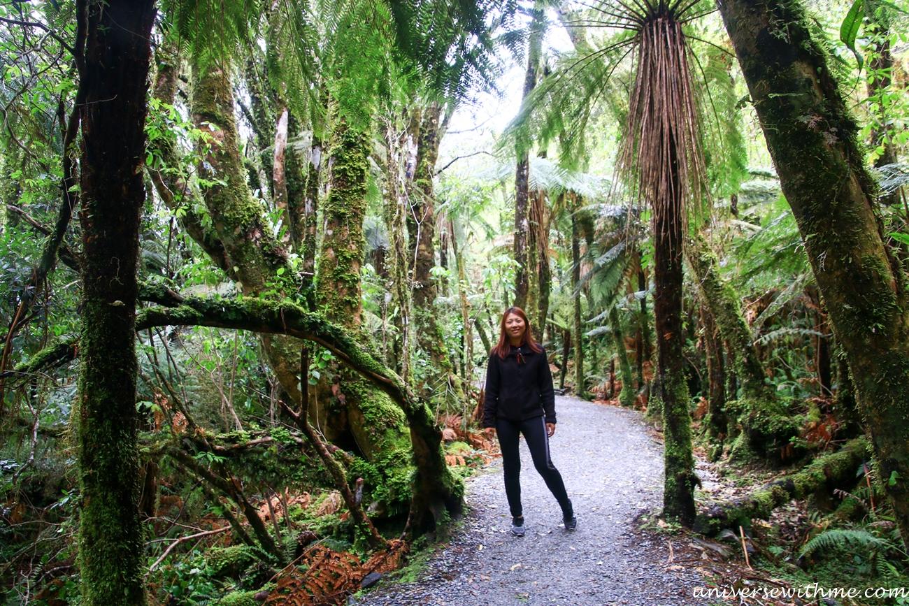 New Zealand Trip_138