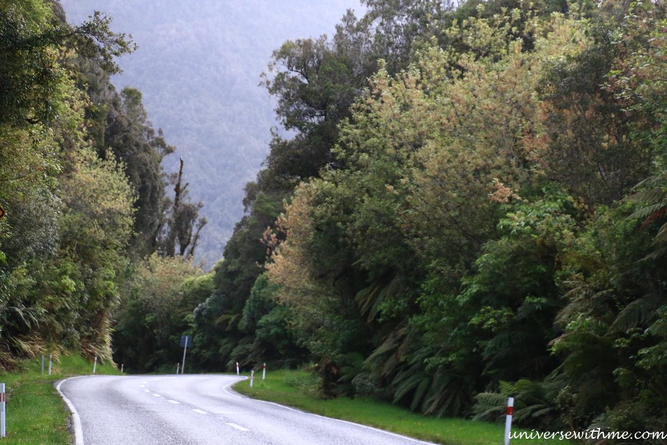 New Zealand Trip_136