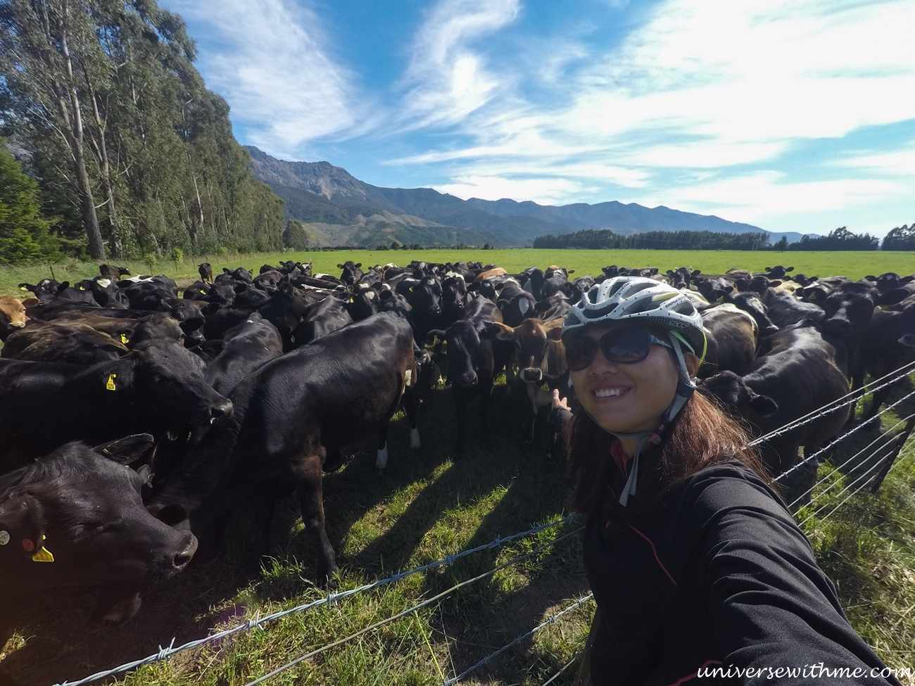 New Zealand Trip_107