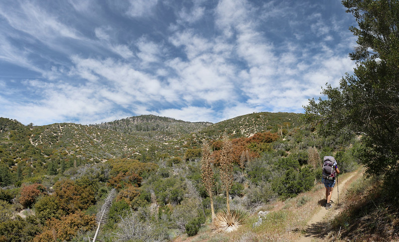 Pretty skies above us as we climb the eastern slope of Pacifico Mountain on the PCT
