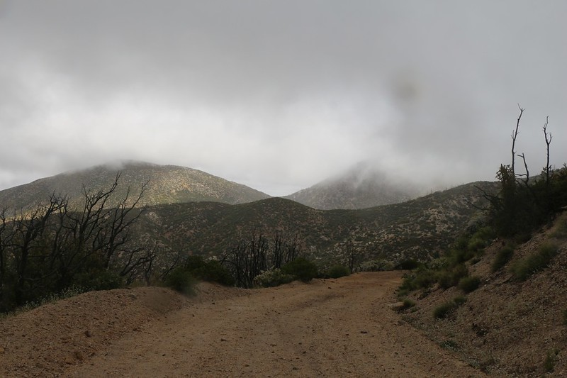 We continued descending beneath the clouds on Pacifico Mountain Road