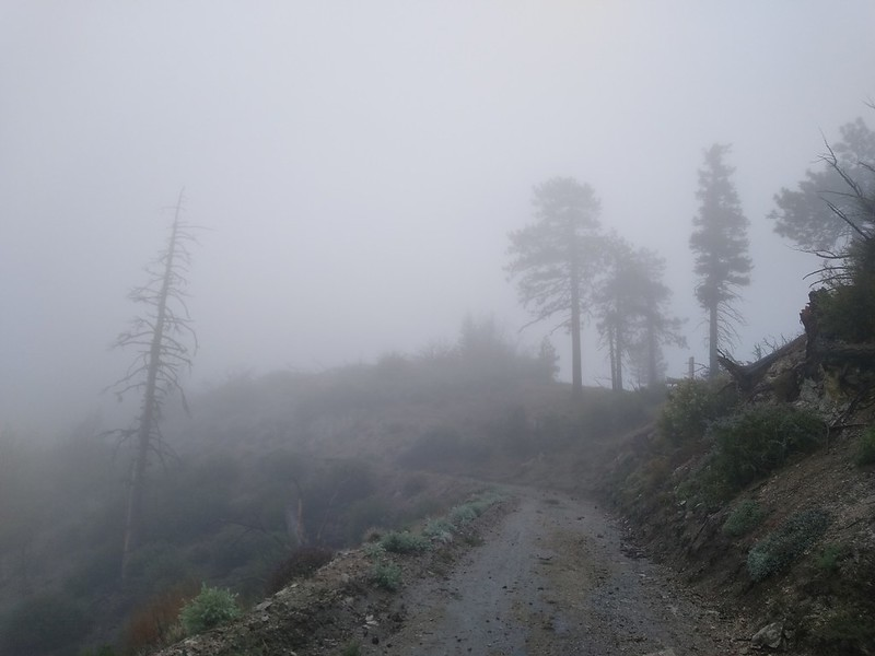Clouds and mist were blowing furiously psat us as we hiked down Pacifico Mountain Road