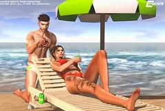 -Beach Crab- Couple Bento Pose