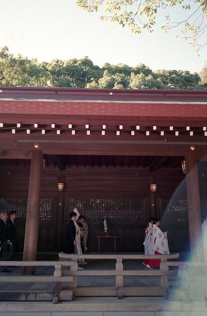 A scene in Meiji Jingu Shrine,Tokyo 2020/02 No.3(taken by film camera).