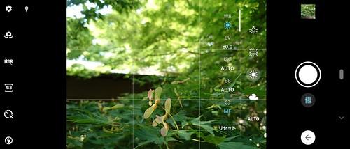 マニュアルモード WBを太陽光にし、MFで手前の種子にピントを合わせた例