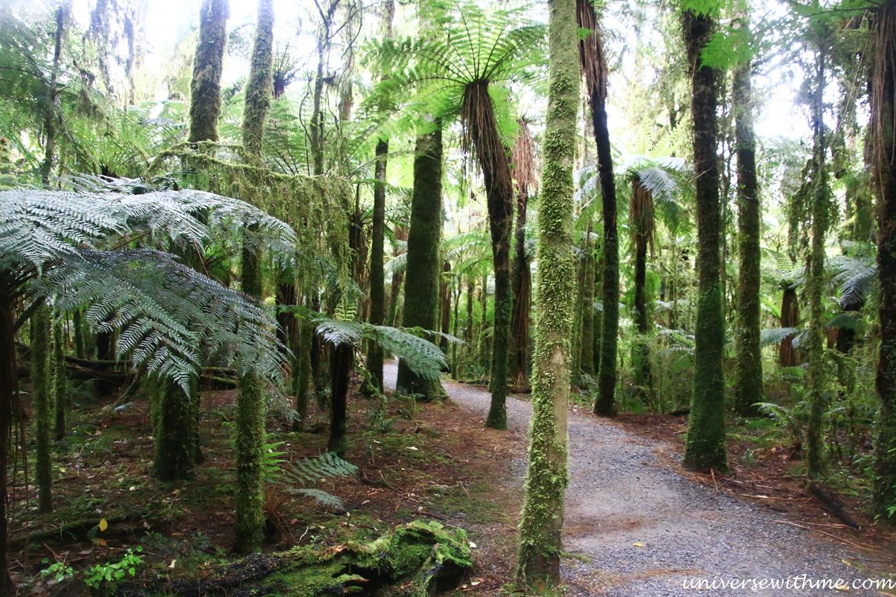 New Zealand Trip_152