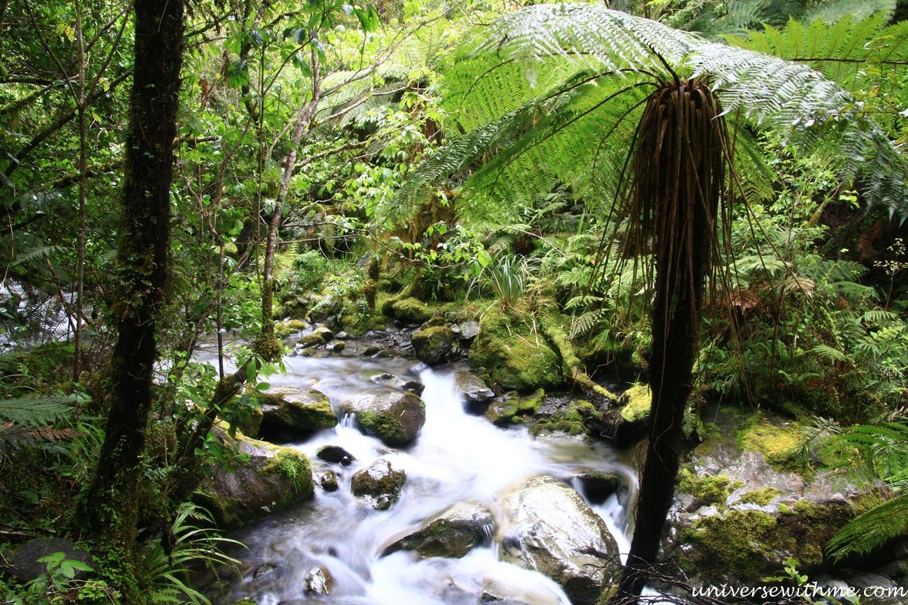 New Zealand Trip_139