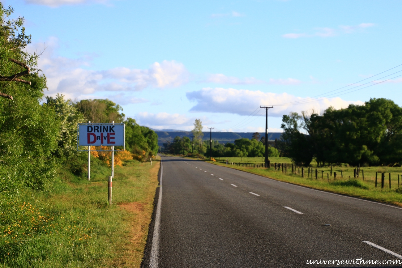 New Zealand Trip_113