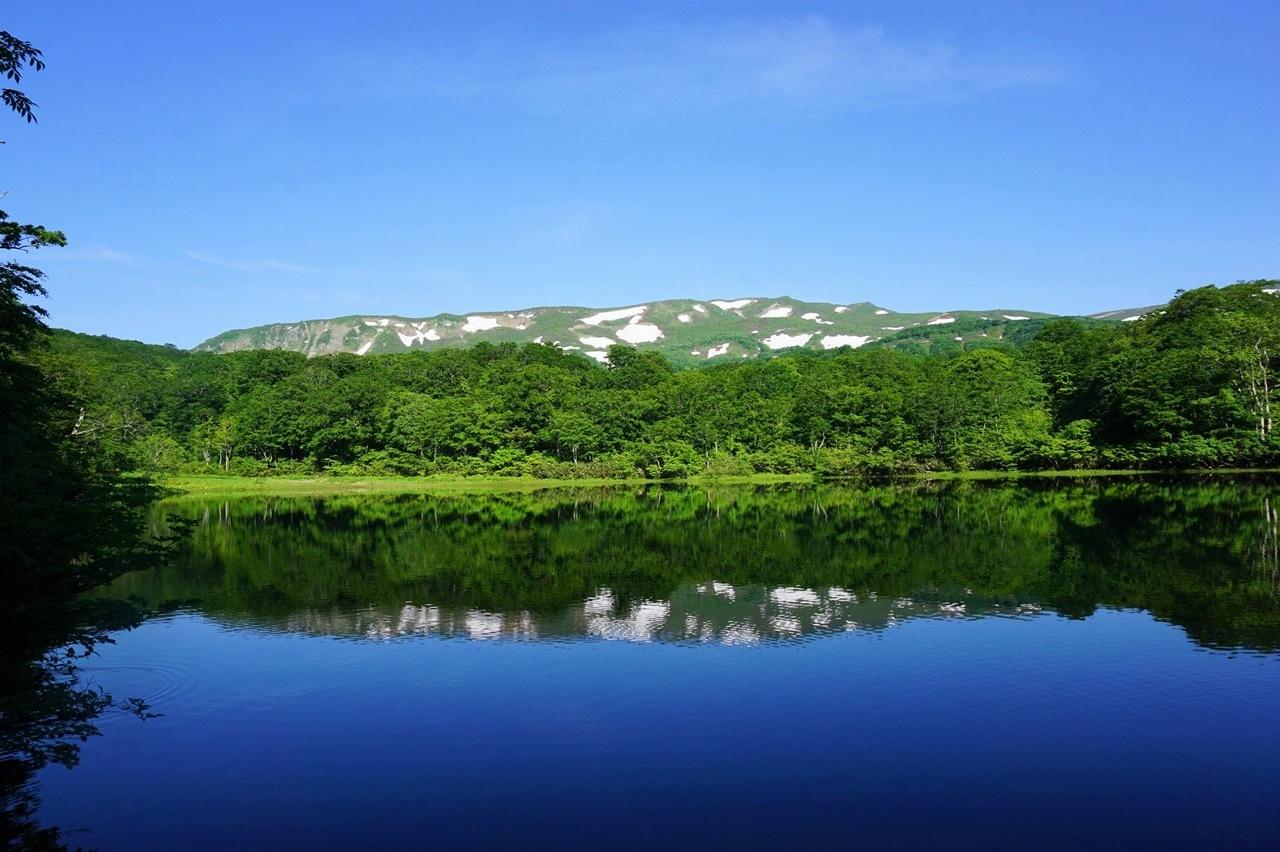 初夏の焼石岳