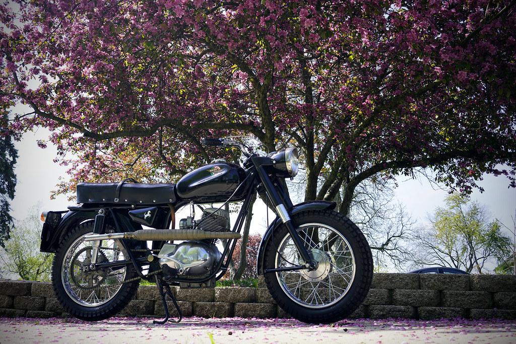 61' Ducati Bronco
