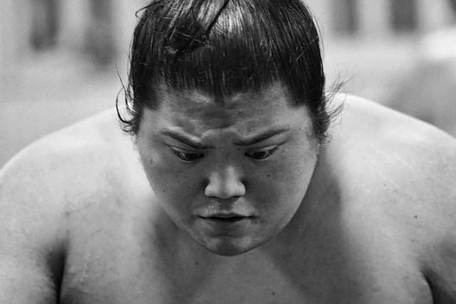 the expressive sumo