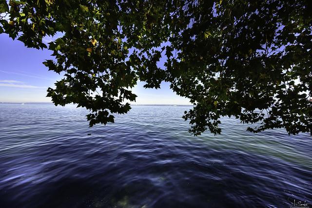 Lake Bodenseen view in Rorschach - St.Gallen - Switzerland