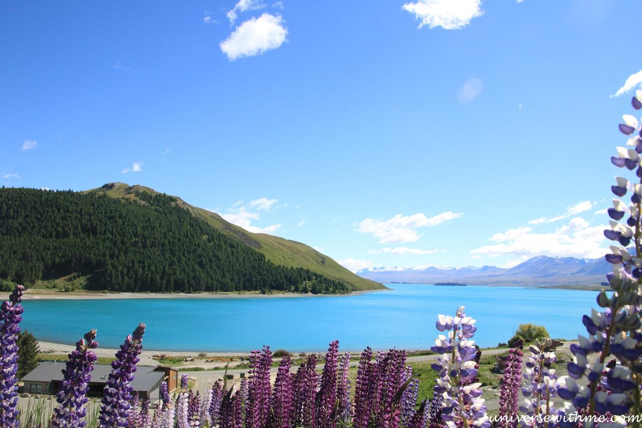 New Zealand Trip_190