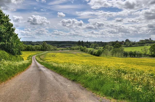The road to Arthingworth, Northants