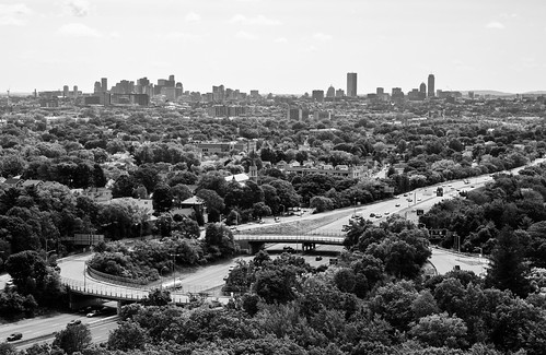 newengland massachusetts boston view forest woods wood trees leaves monochrome skyline wrightstower medford i93 interstate93 highway cars traffic bridge tower blackandwhite blackandwhitephotography bw