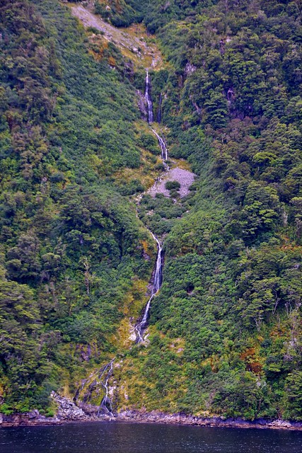 Dusky Sound, Fiordland National Park, Piopiotahi (Milford Sound) Marine Reserve, Te Wahipounamu World Heritage Site, South Island, New Zealand