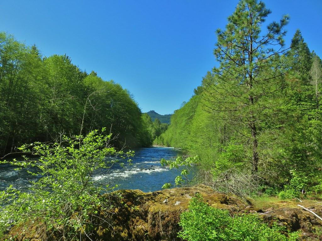 Middle Fork Willamette River