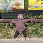 Cottam Scarecrows