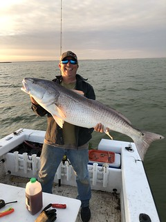 Man in boat holding a huge red drum fish