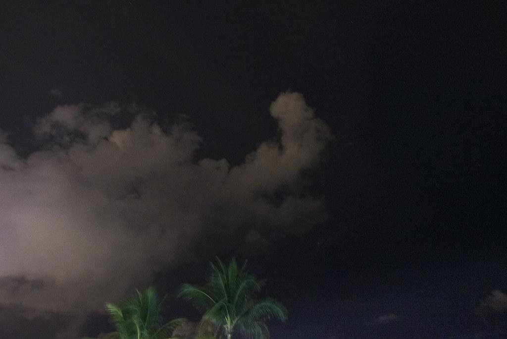 150607.clouds.palmtree.night.mb-4249