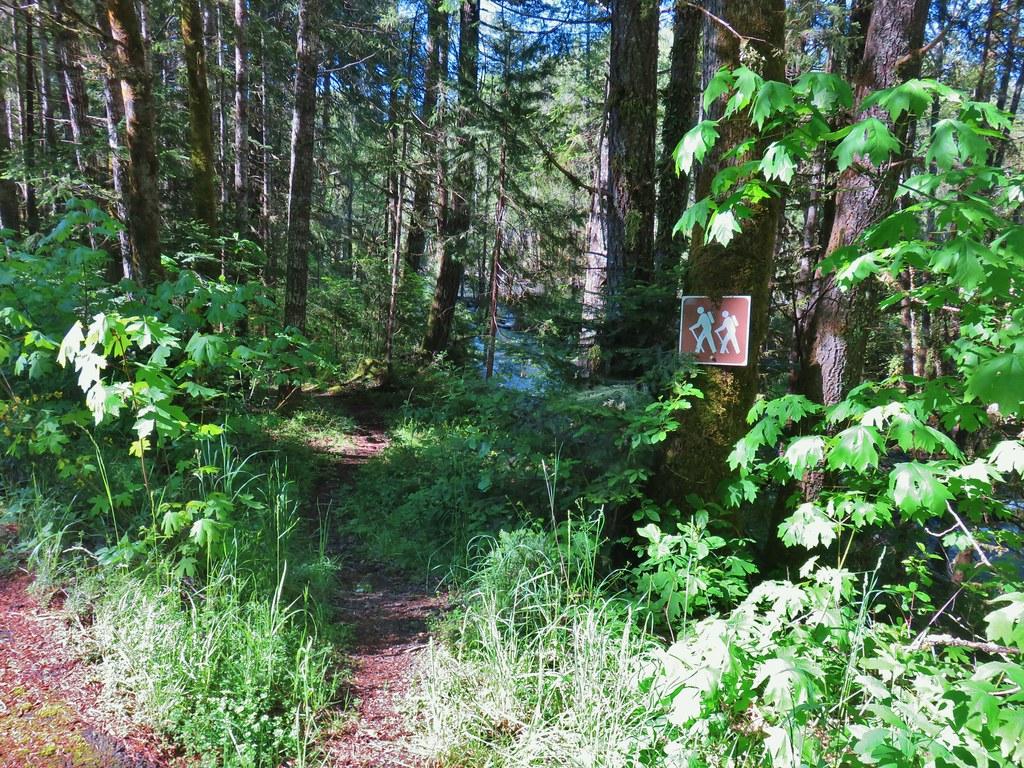 Middle Fork Trail leaving FR 21