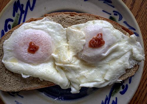 eggs25v20