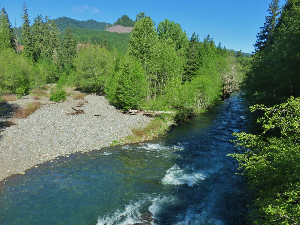 Middle Fork Willamette River from FR 2127