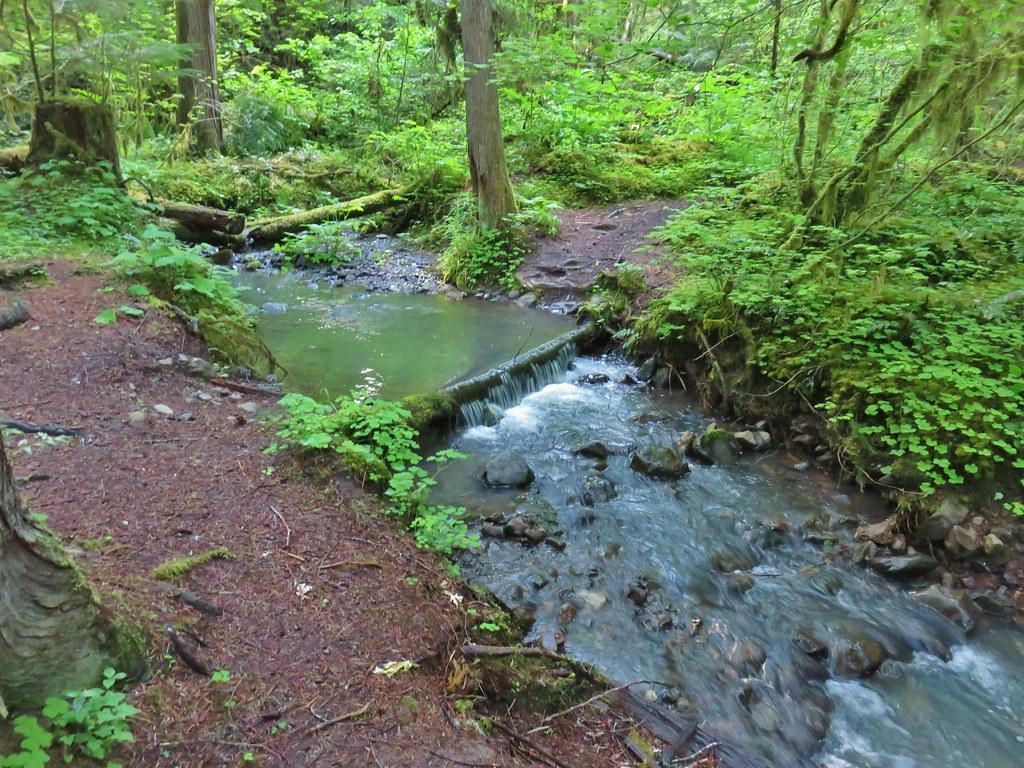 Cone Creek