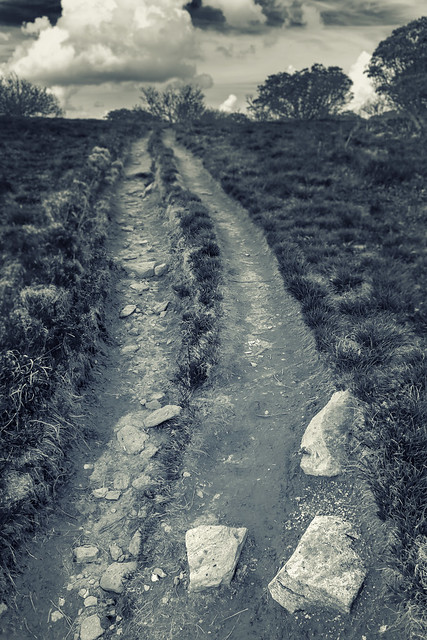 Craggy Gardens Trail (Blue Ridge Parkway)