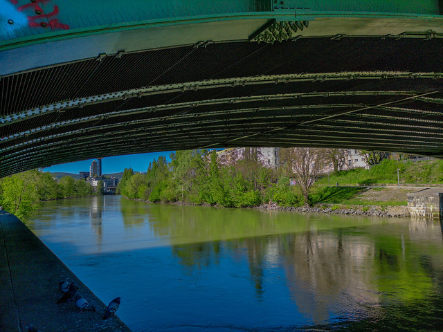 Under the bridge in a really clean Viennese Danube Canal.