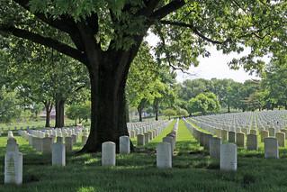 Jefferson Barracks - Memorial Day - 2020 C
