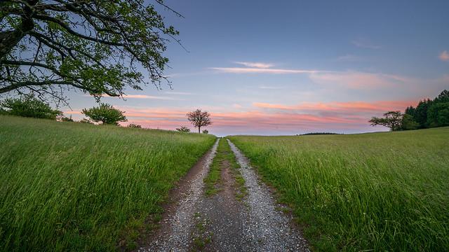 Beautiful sunset between the fields