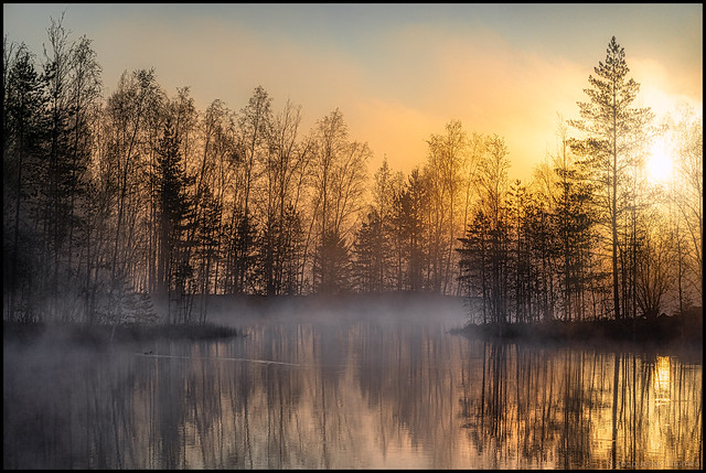 Soluppgång i dimma