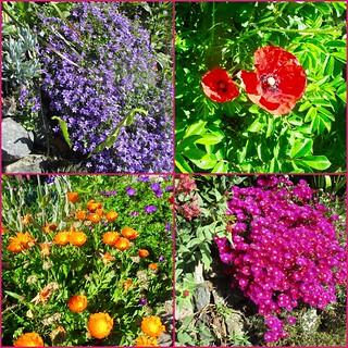 Colourful Mullion