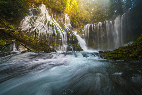Bathed in Beauty | by Jim Patterson Photography