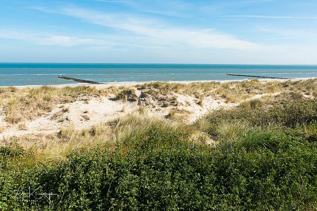 Dunes of Zeeland | Zeeuwse duinen
