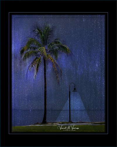 topaz topic sarasota palm tree texture creative whimsy rain art adifferentpointofview blue