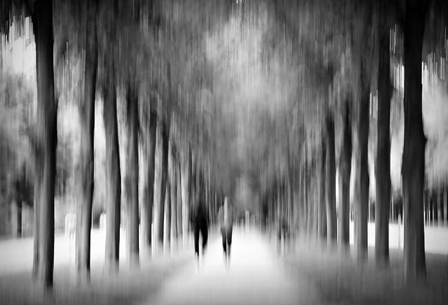 disguised walk