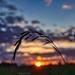 Fernweh im Sonnenuntergang