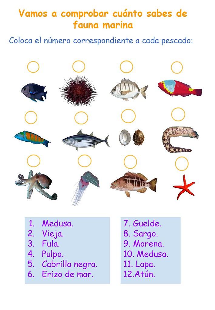 2.8. Siguiendo nuestra huella_5. Nadando con lobos_page-0006
