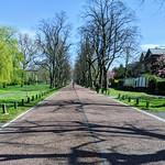 Empty lane at Moor Park